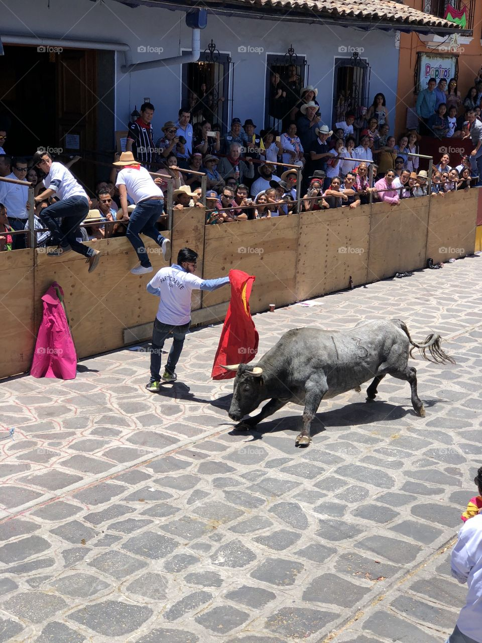 Close Call. In Xico, Veracruz Mexico they have a festival called the running with the bulls. Participants are given the chance to try to outrun and dodge the bull to entertain the thousands of spectators.