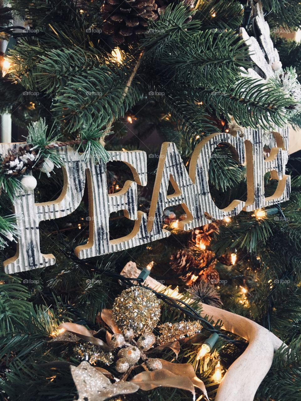 Christmas, Winter, Tree, Celebration, Decoration