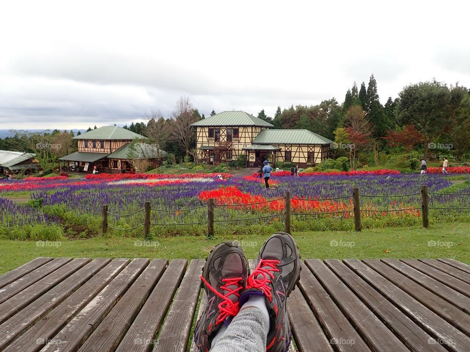 Enjoying views of flower fields
