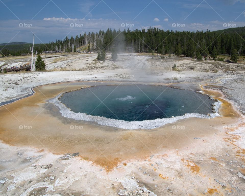 The Great Prismatic Spring on Geyser Hill in Yellowstone National Park boiling its beautiful turquoise water on a sunny summer day.