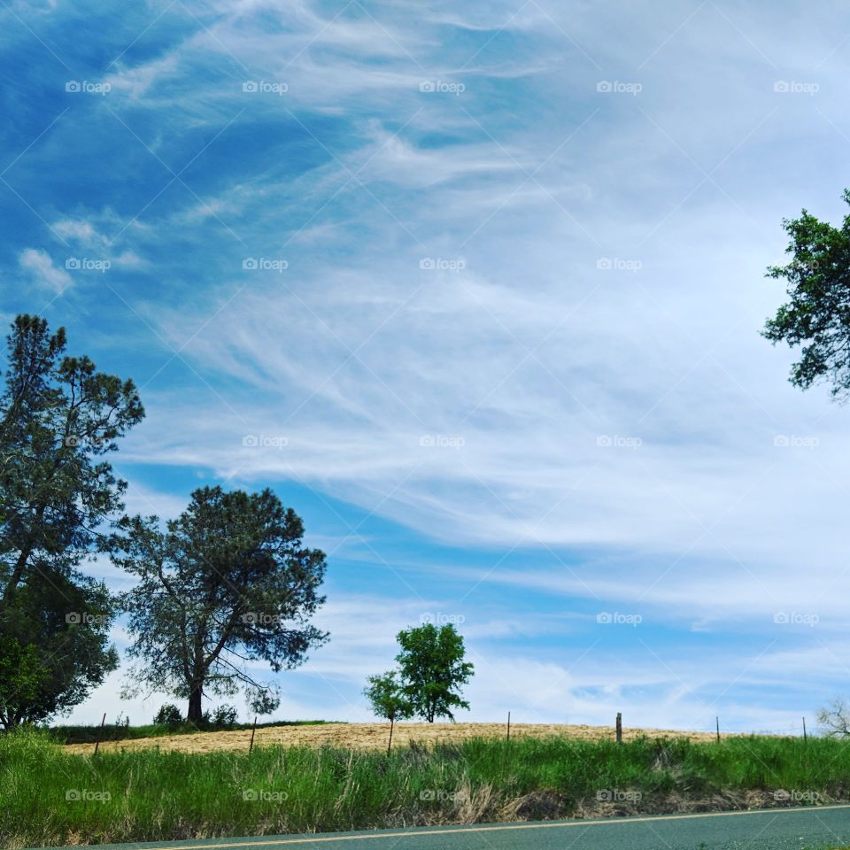 The stunningly blue skies of southern California in the late autumn. The breeze was warm, with the scent of flowers and new grass carried off the surrounding fields.