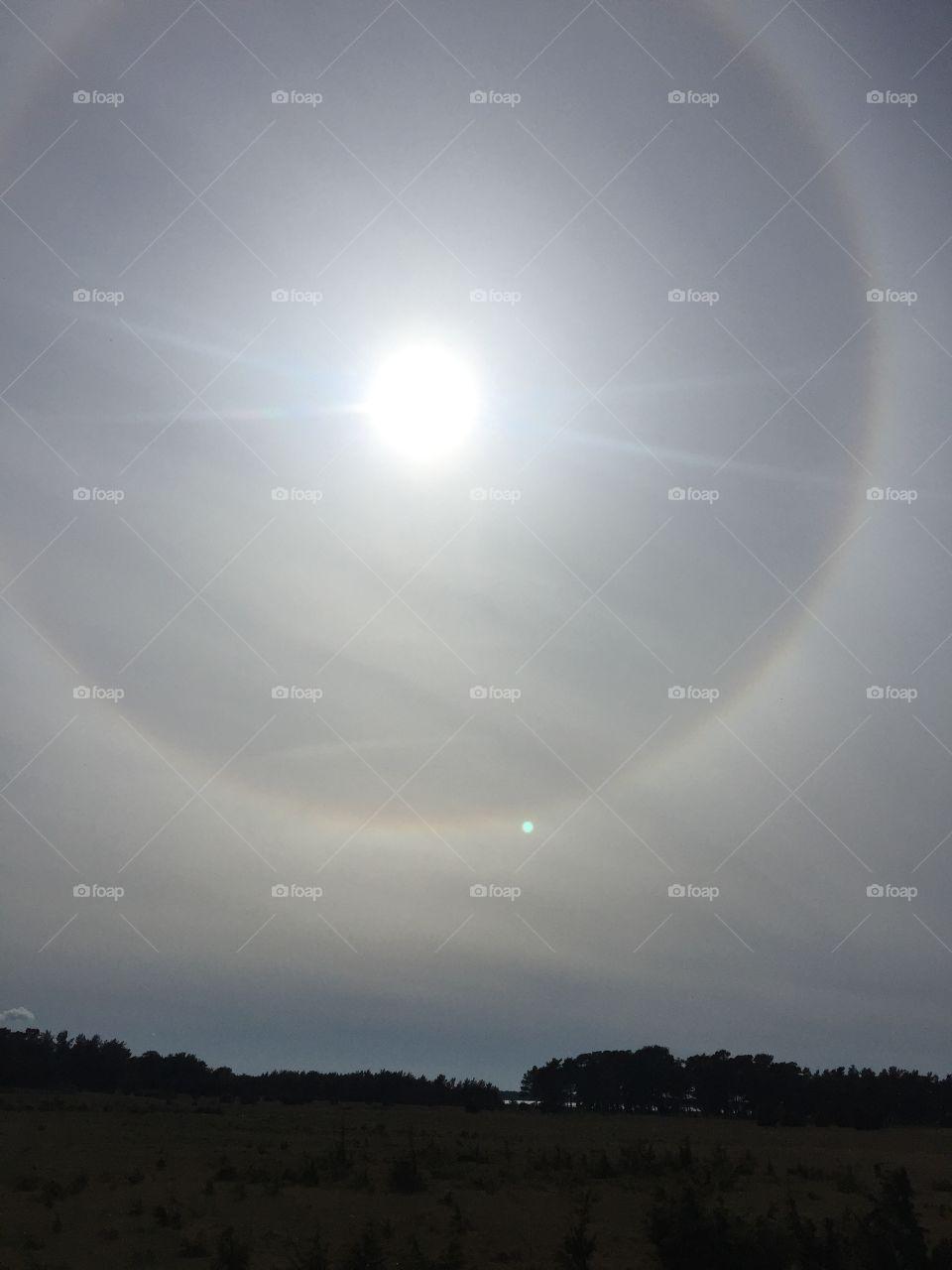 A halo I captured at Fårö in May ☀️