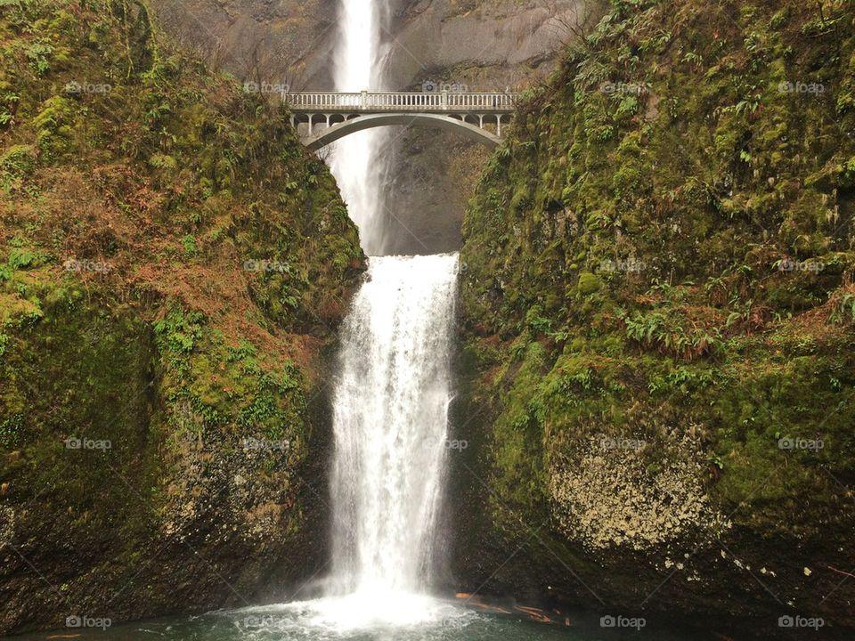 Scenic view of metnomah falls