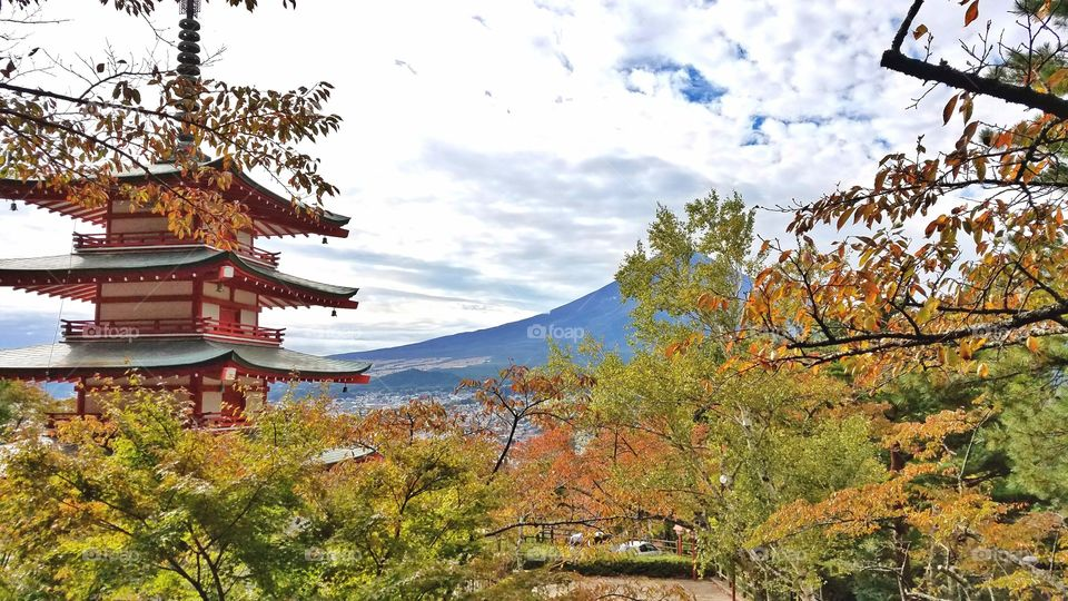 Red Pagoda and mount Fuji in the clouds