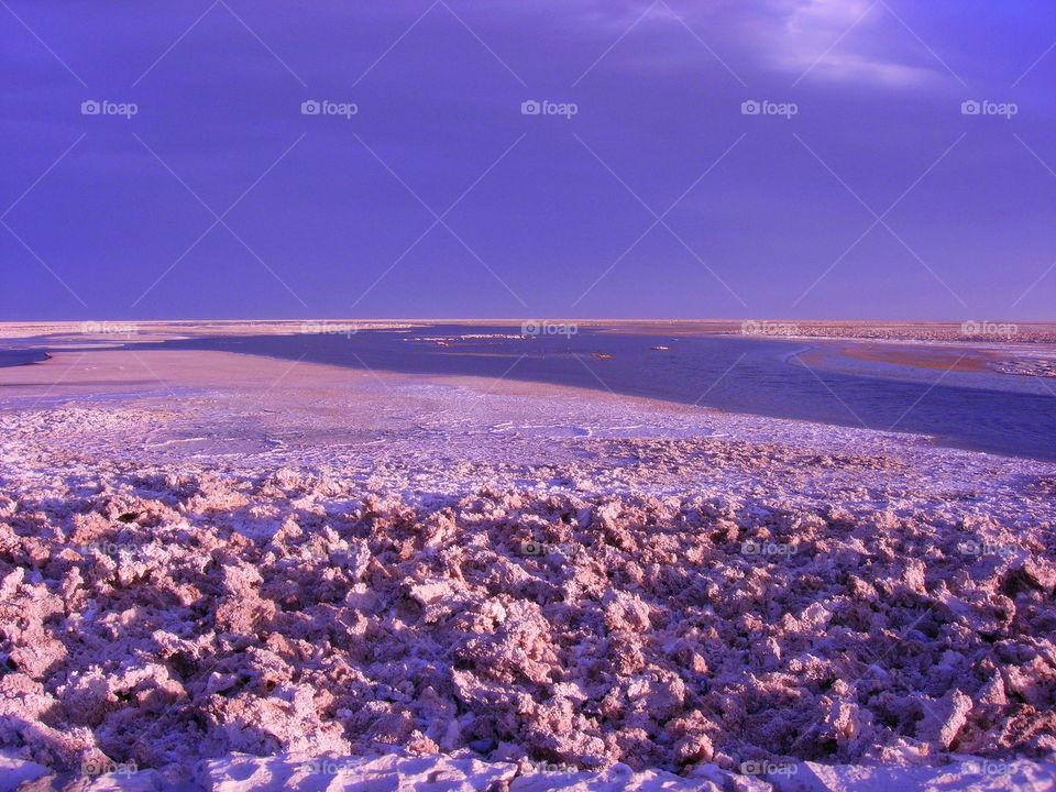 desert in the purple atmosphere