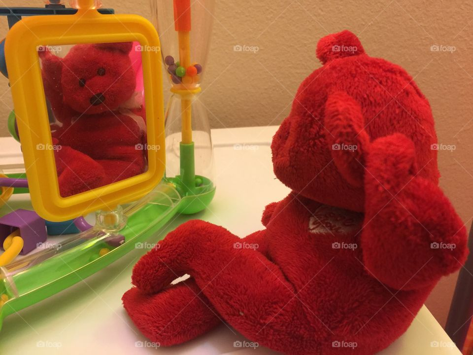Toys mirror stuffed animal