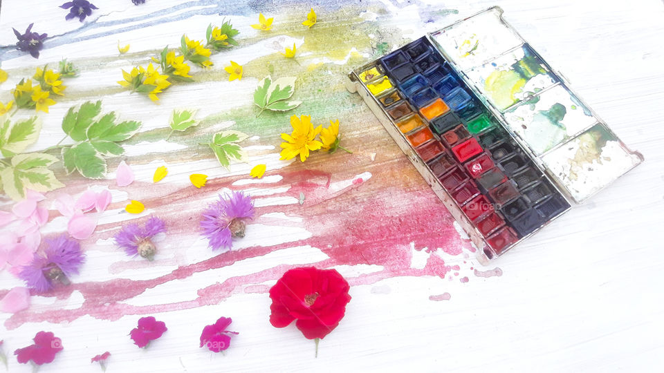 watercolor and flowers colorful