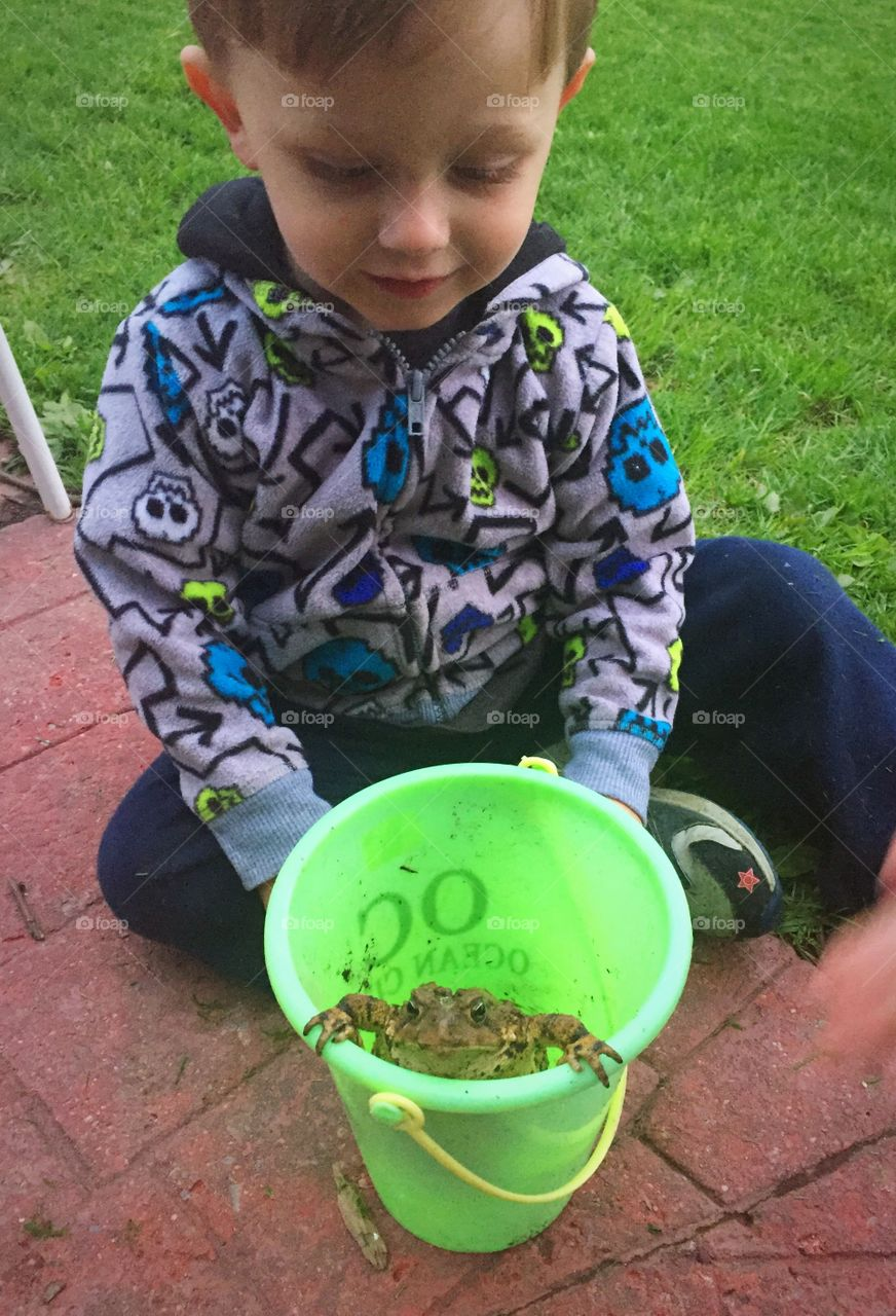 Small boy sitting with frog in bucket