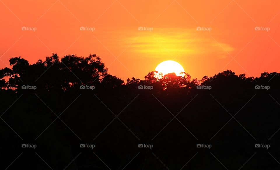 Sunset at golf course!. Sunsets are so orange and red I watch all of them with my bare eyes. It is big party for my brain!