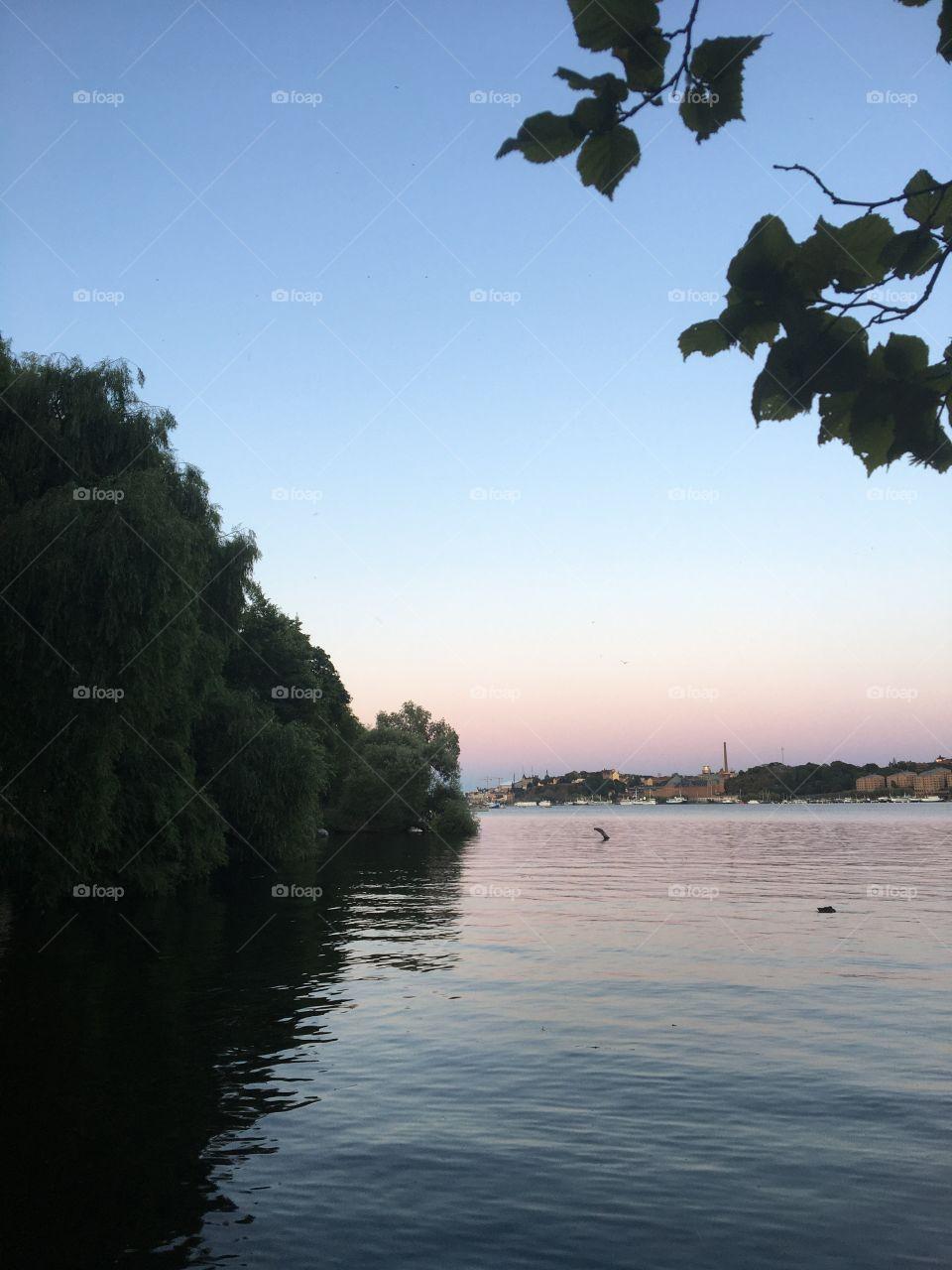 Summer lake evening