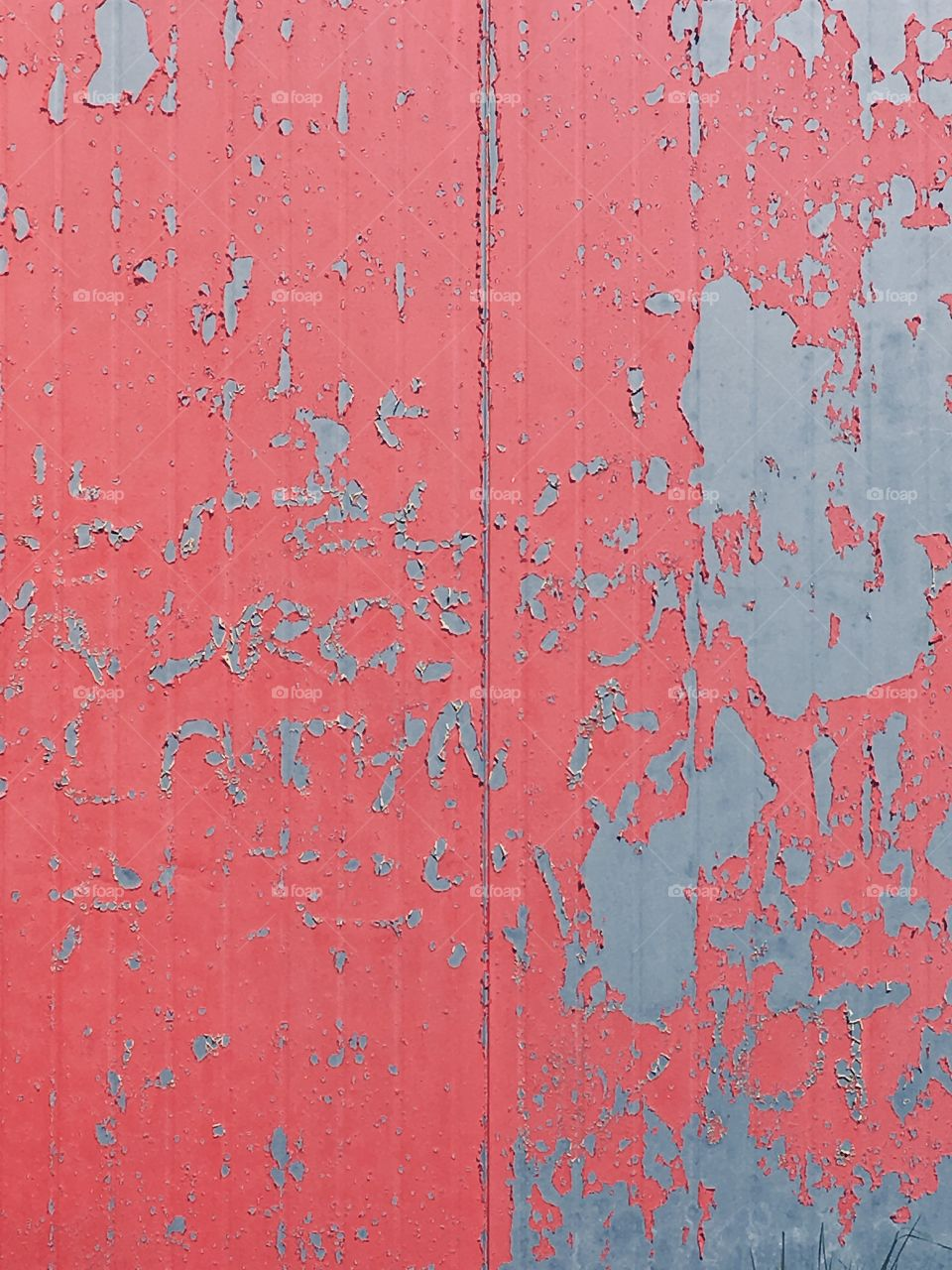Texture pink wall
