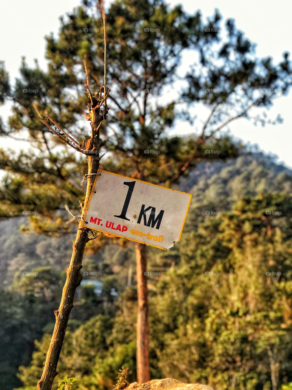 Let's start the climb! 1KM of 9.1KM from the starting trail. Ofcourse I can finish the clim! 💪🏃🚵⛰️🏞️