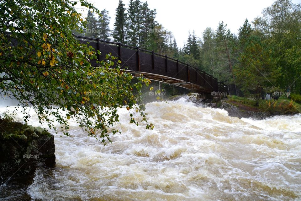 Bridge over troubled Water . From a Big Waterfall from Heaven in september in Norway