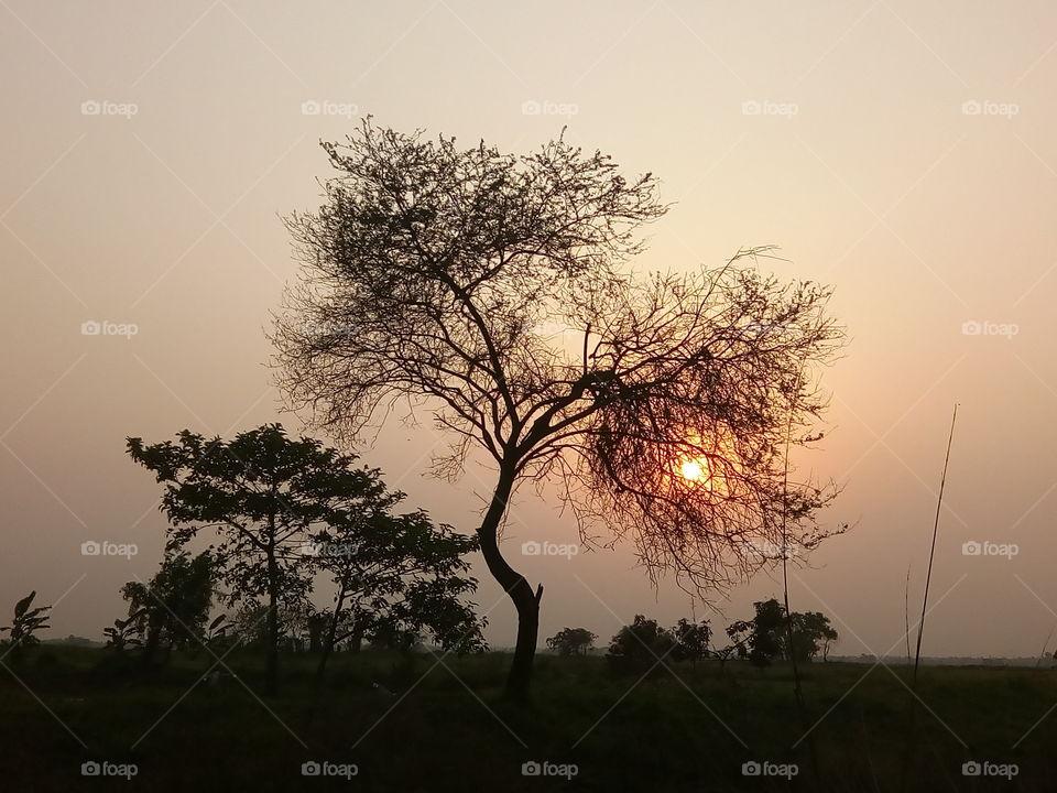 landscape 2017/10/03  021  #আমার_চোখে #আমার_গ্রাম #nature #landscape #sky #horizon #sunset