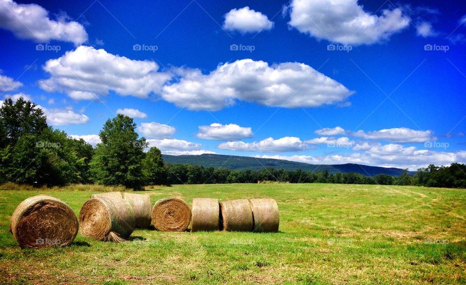 sky country farm hay by tncobb