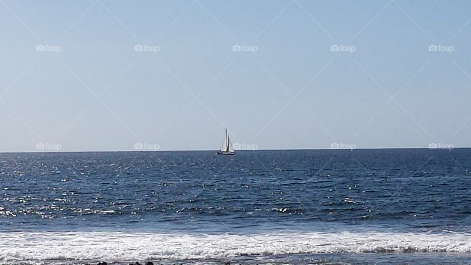 the sailer and the sea