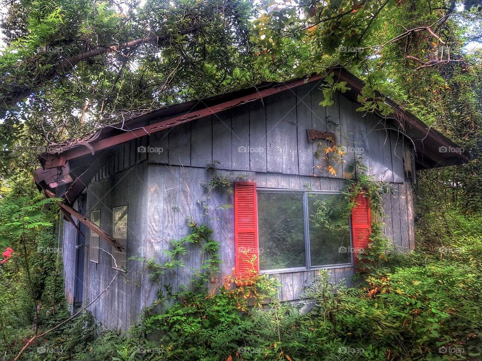 Abandoned Witch House #2