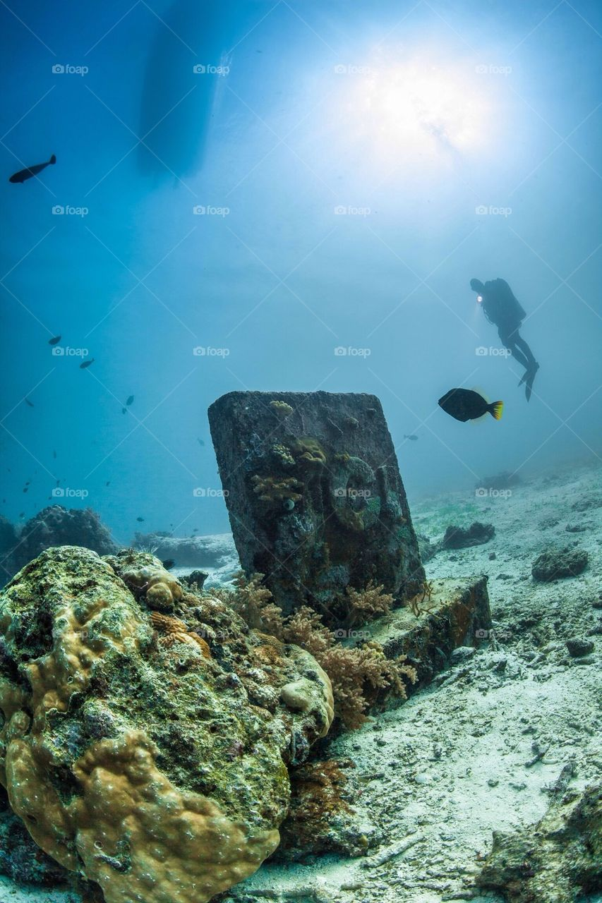 Diver and grave Stone | image, diving, diver, cebu