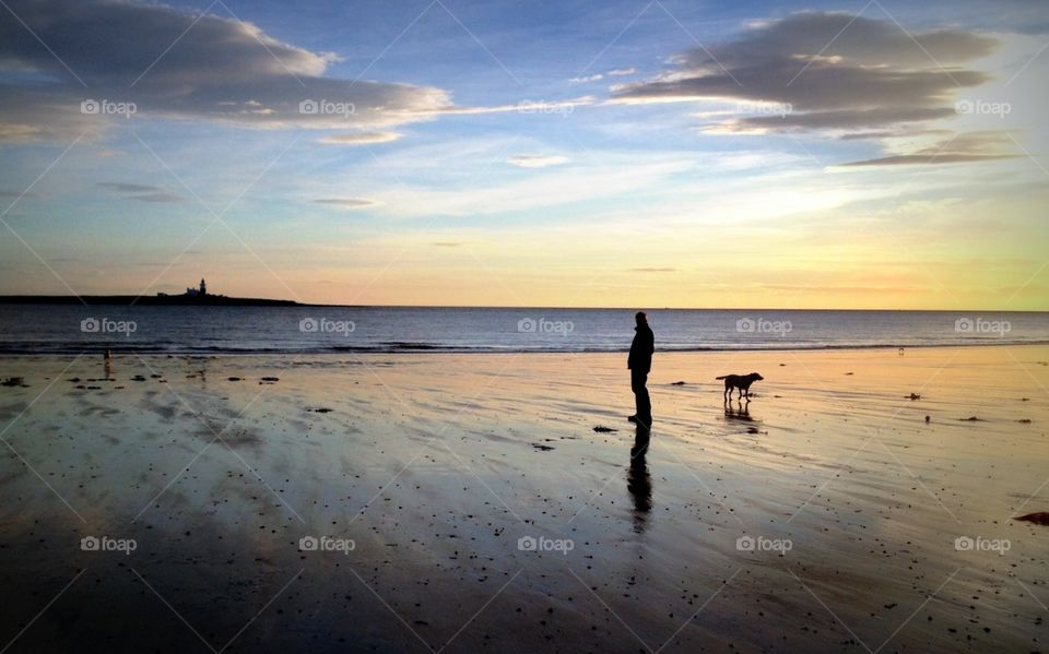 Early morning dog walk. Walking with my dogs  on amble beach just after sunrise