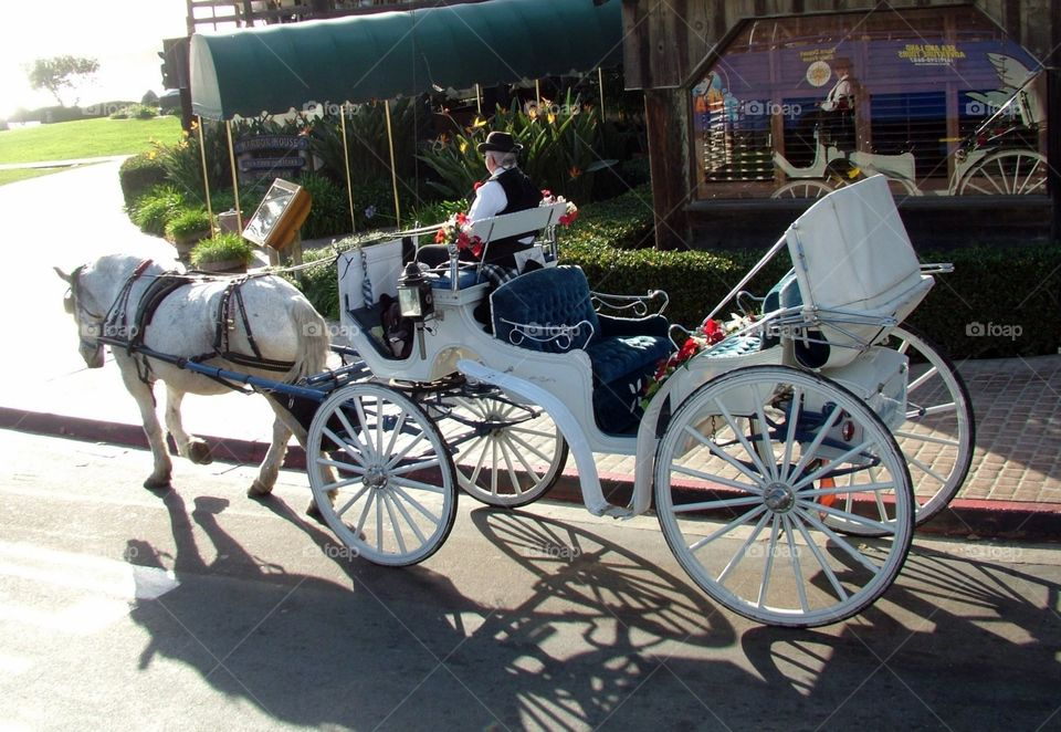 California carriage ride