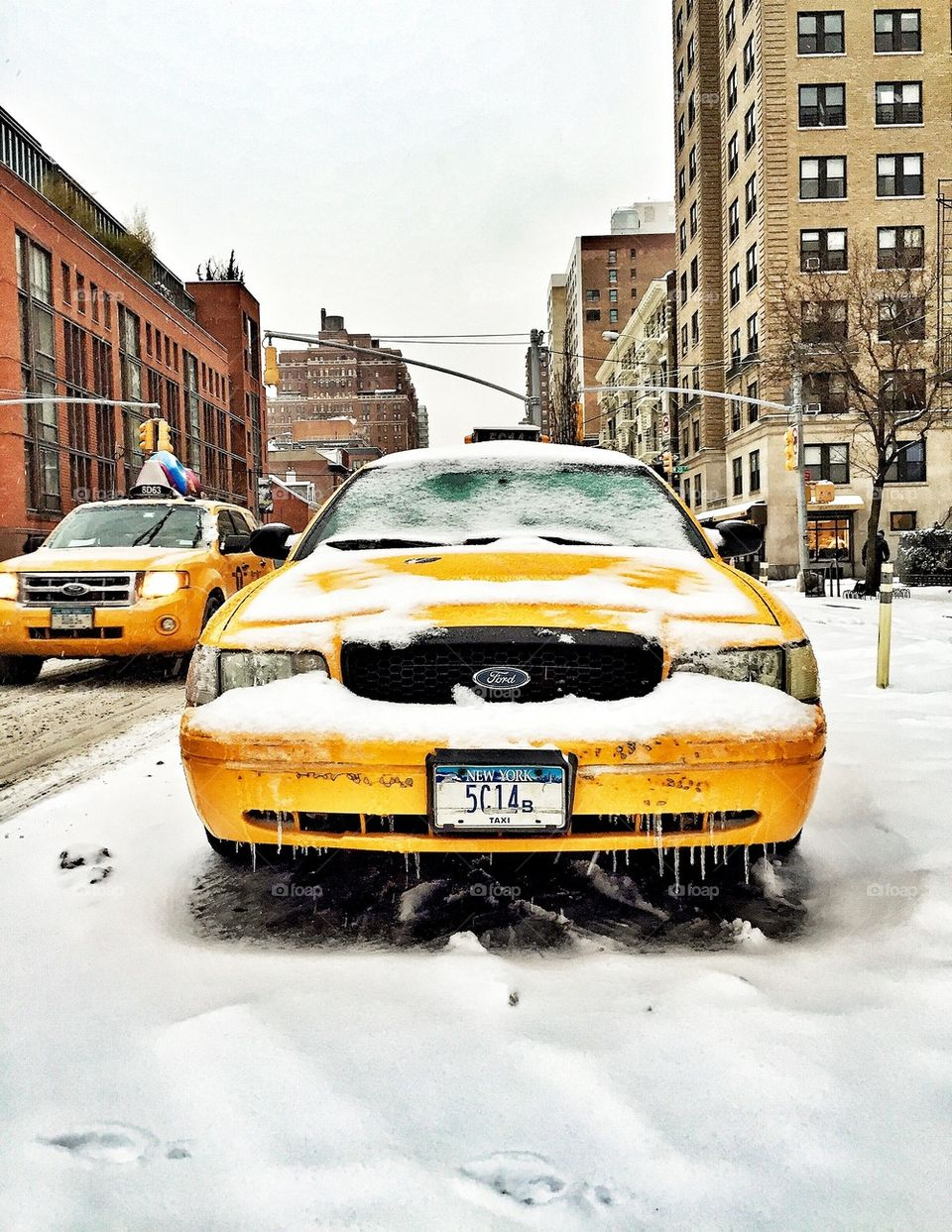Fresh Snow Fall and New York Cabs
