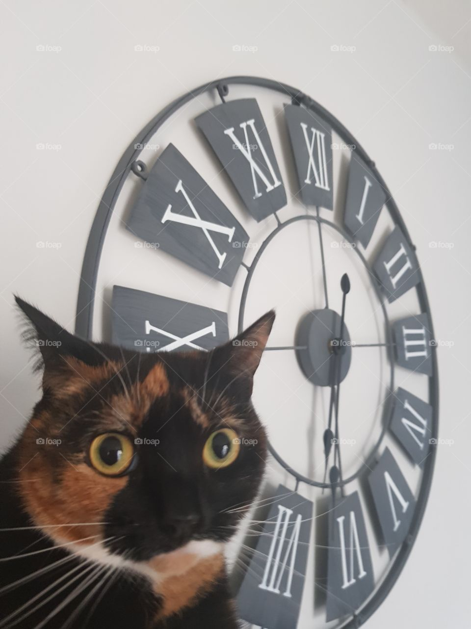 When you remember the clocks have gone forward!