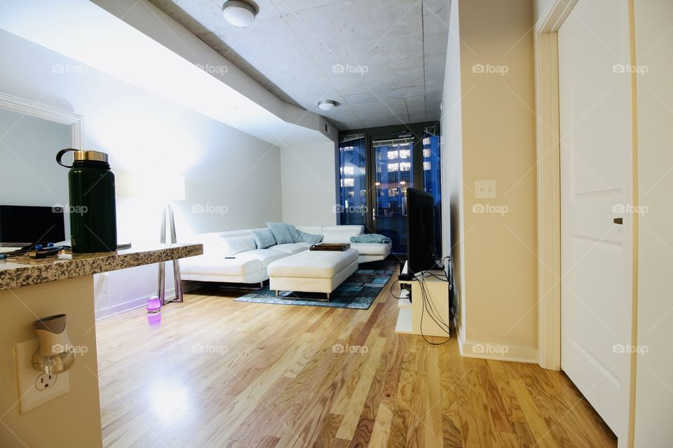 Living area in plush high scale apartment and in urban living metro city