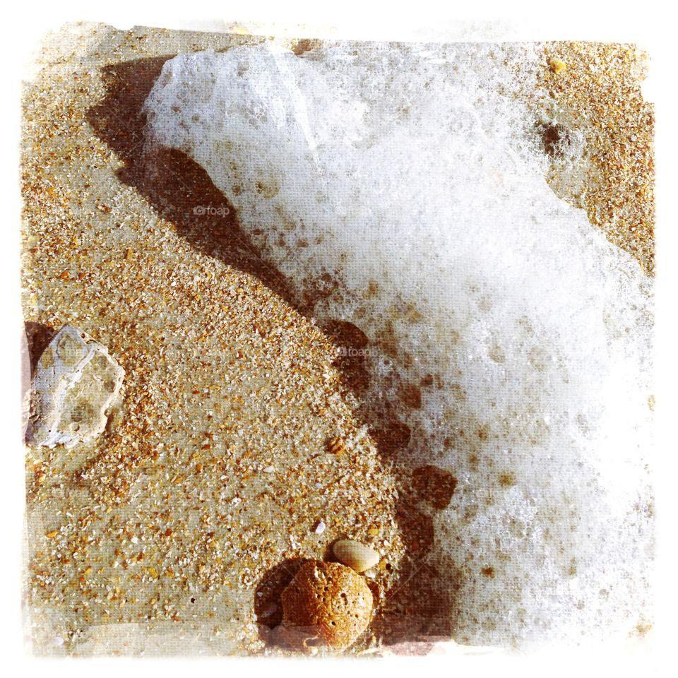 Sea Foam and shell on beach