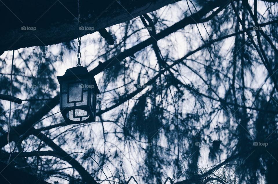 Lantern on the tree. Old antique lamp. phuket, Thailand