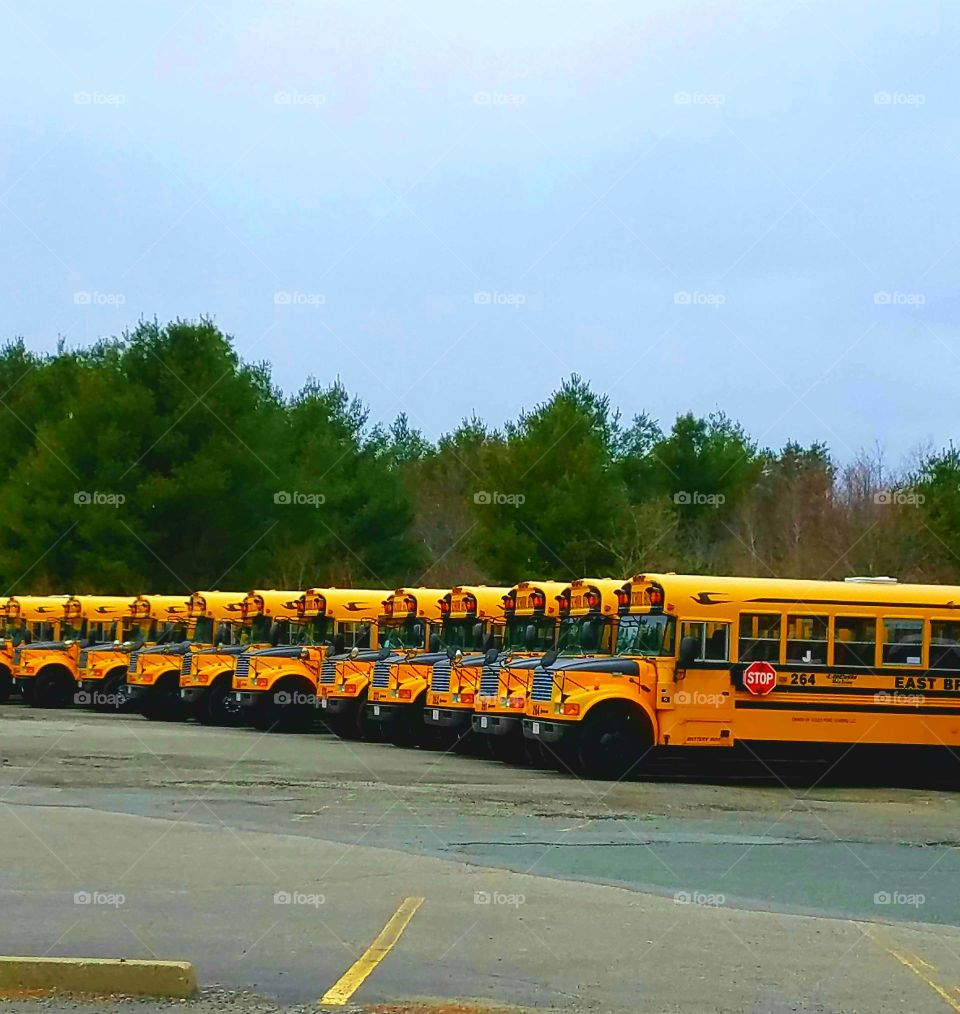 Pic of school buses parked in a row at the end of a day in a huge parking lot. Blue sky & blacktop finish this wallpaper.