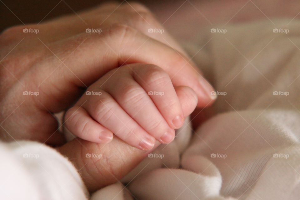 A new born baby holding his mother fingers