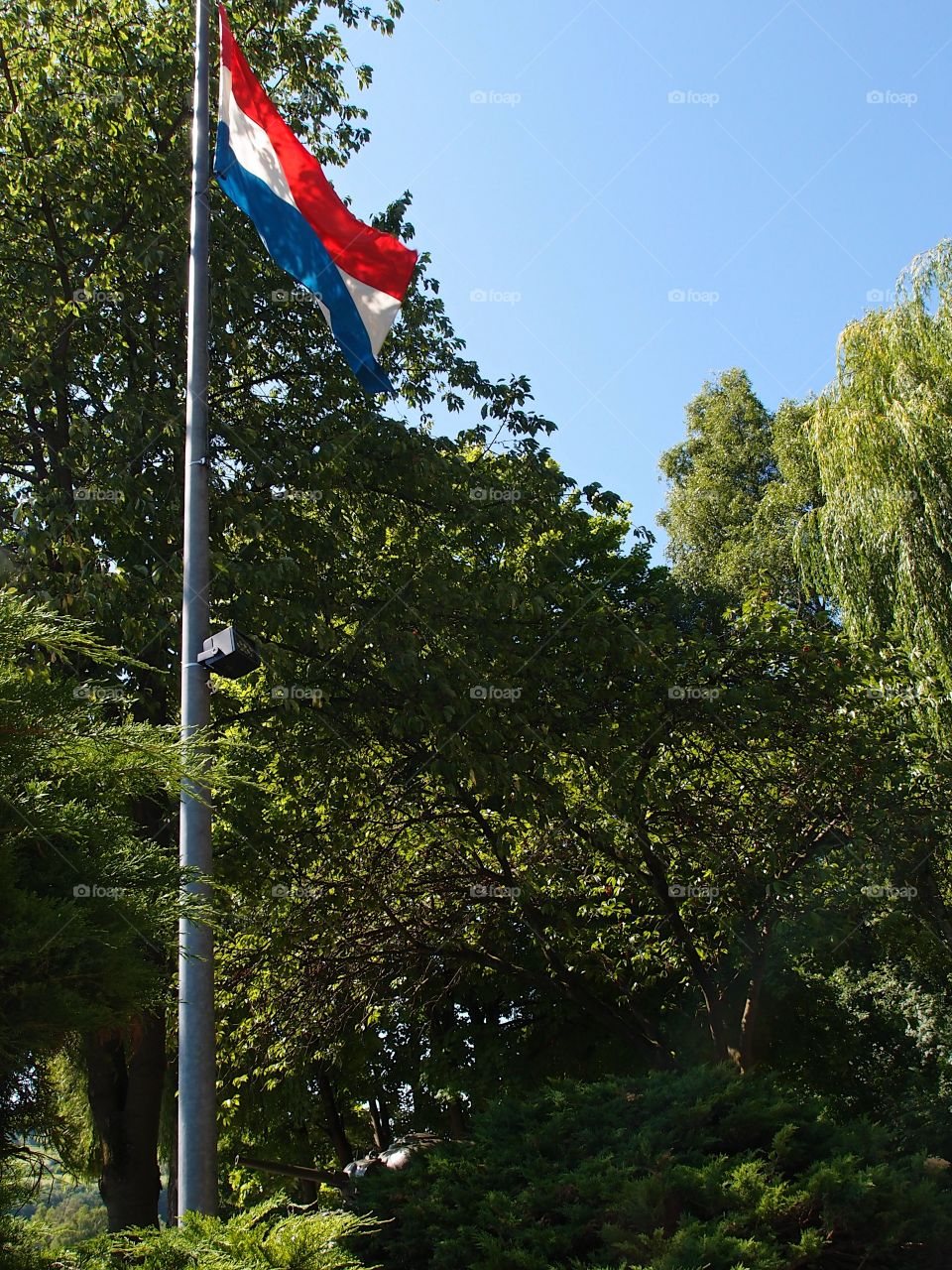 The flag of the wonderful people of Luxembourg waves through the trees on a sunny summer day.