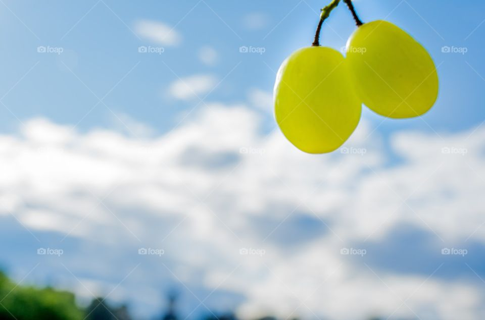 Double grapes
