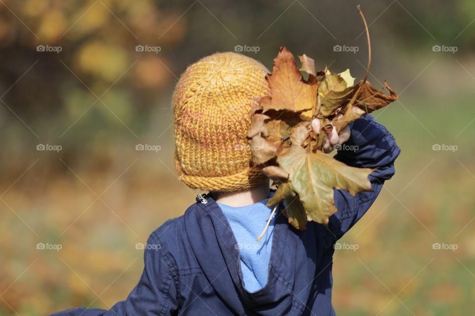 Little boy holding a giant pile of leaves. Fall, yellow, season, childhood, little boy.