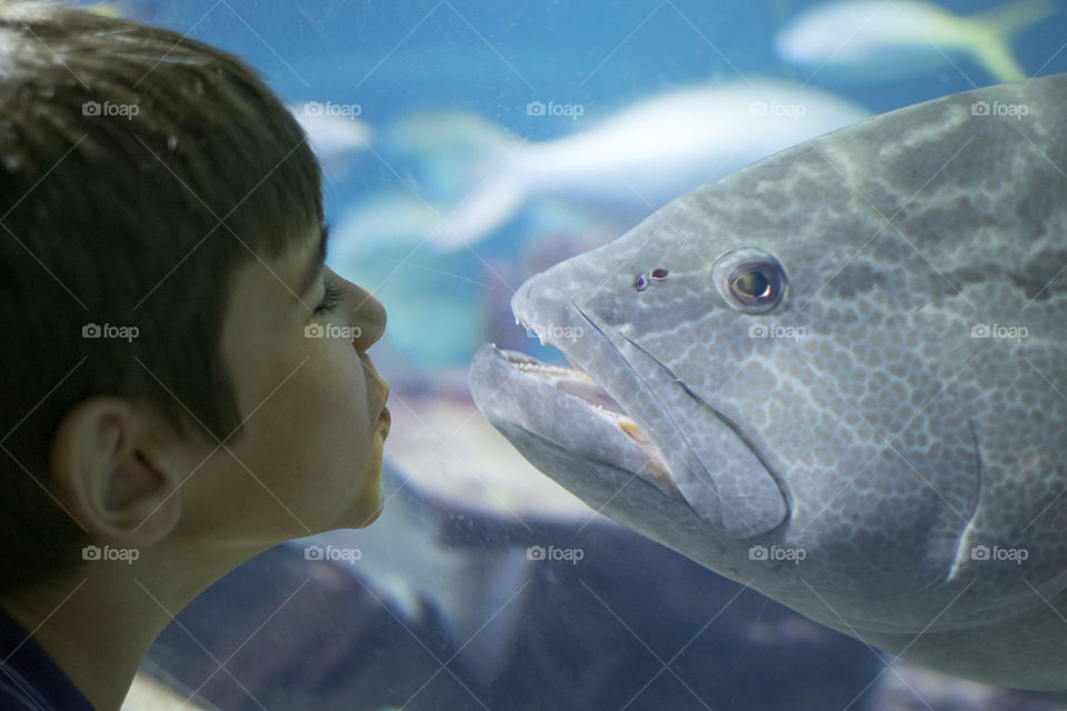 Boy face to face with a fish at an aquarium