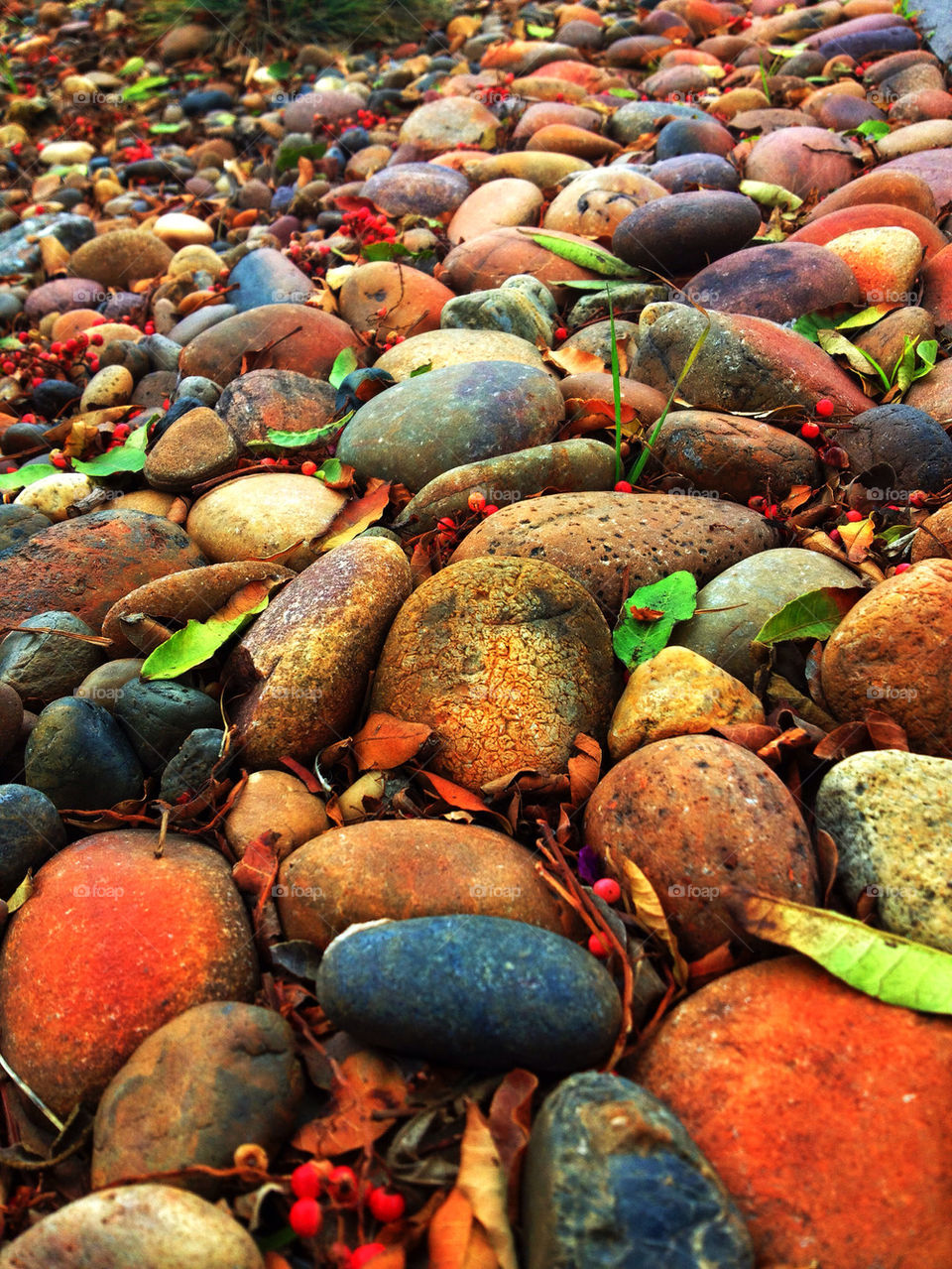 nature summer colors stones by analia