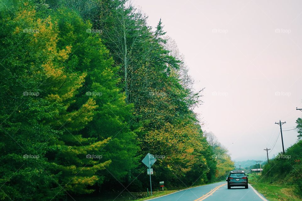 Beautiful blue ridge scenic drive in north George and Tennessee