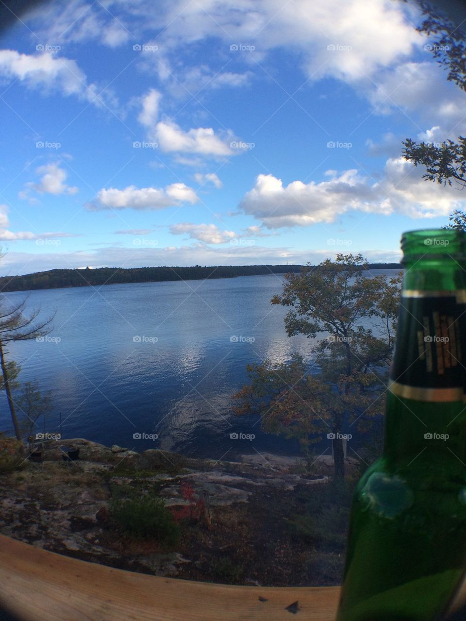 A beer bottle's view