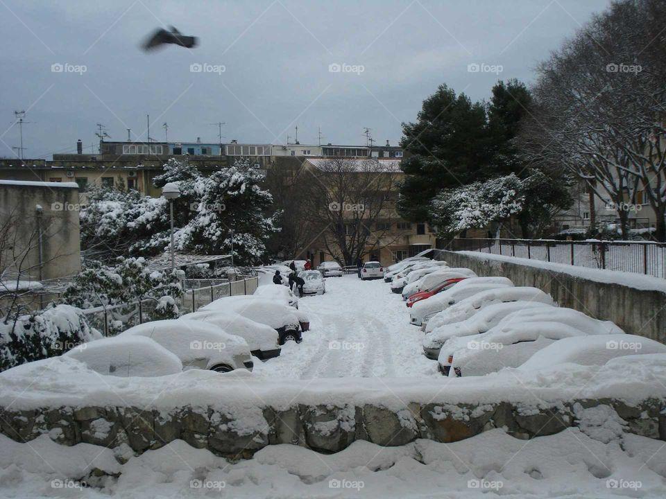 Cars under the Snow