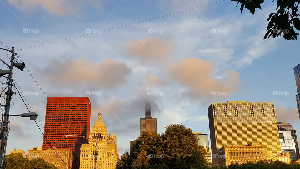 Chicago at the start line