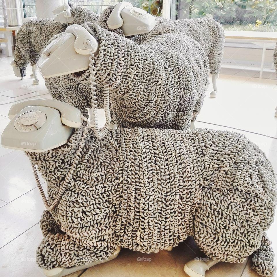 Lazy tele sheep