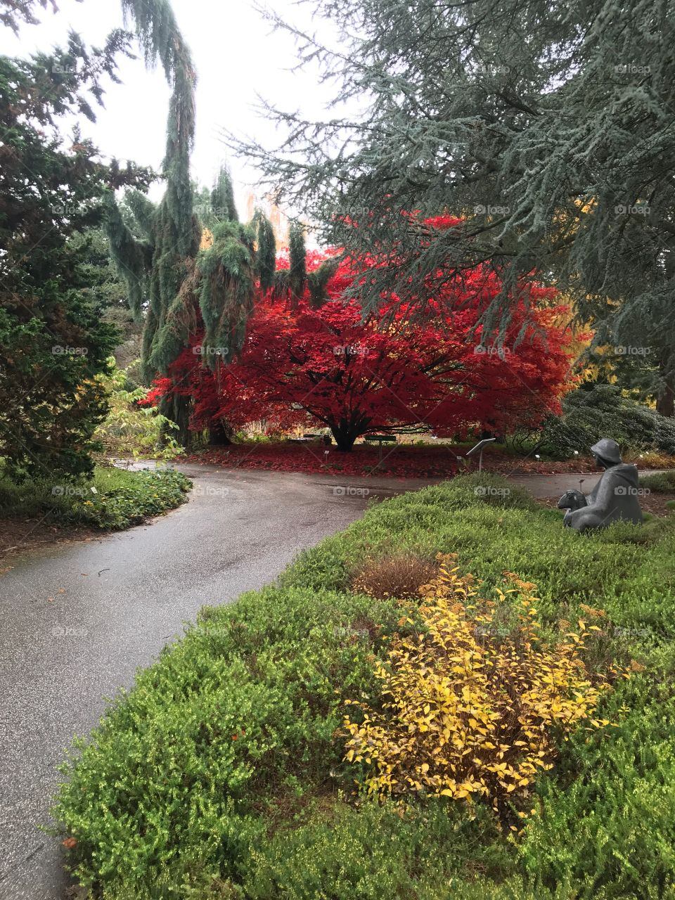 Loki Schmidt Garten Hamburg im Herbst
