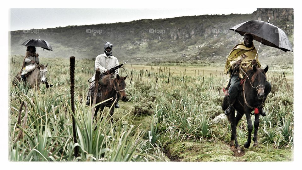 Who says you can't use an umbrella whilst on a horse? . A trio of Ethiopians using their umbrellas on horseback