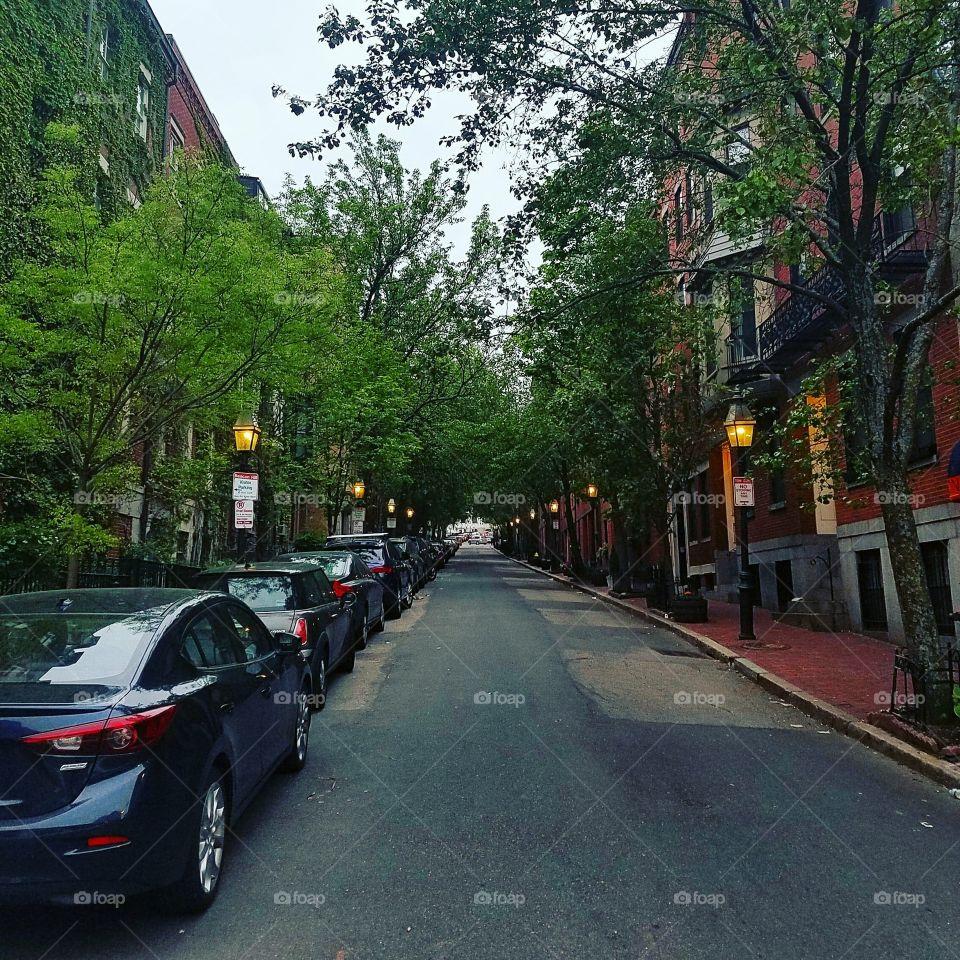 Boston City Streets