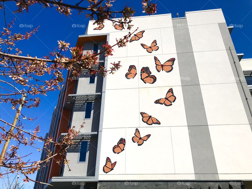 Building with 13 mosaic butterflies
