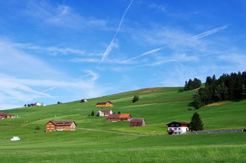 Landscape view of green pasture and houses