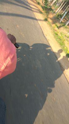 the shade of shadows