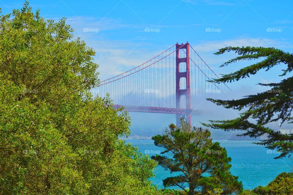 San Francisco Golden Gate Bridge In Fog