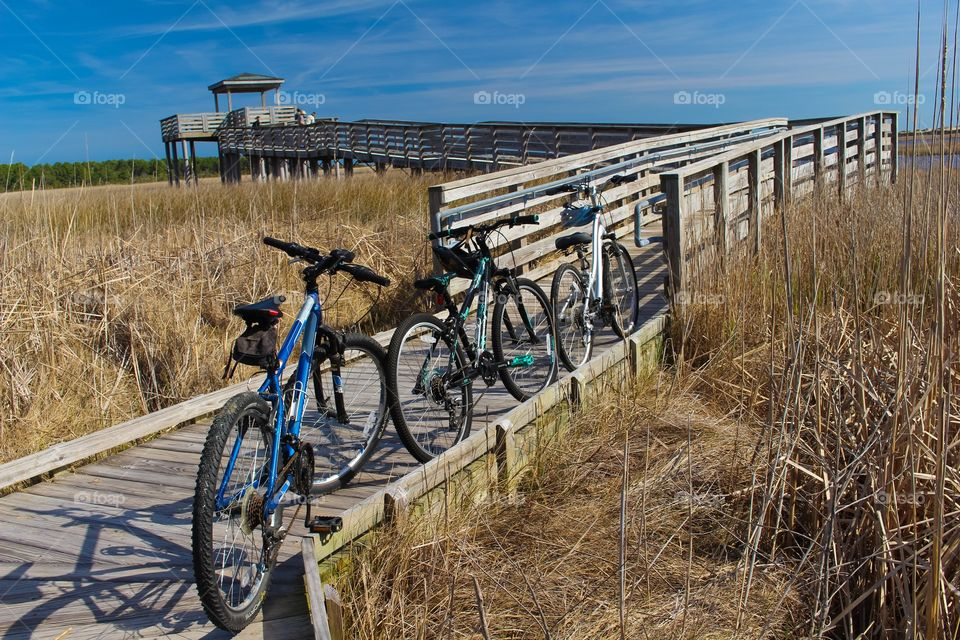 Bicycles on wooden boardwalk