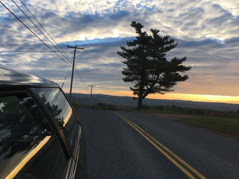 Road trip in my 1994 Subaru Legacy. Here is a beautiful outdoors sunrise photograph on top of an orchard